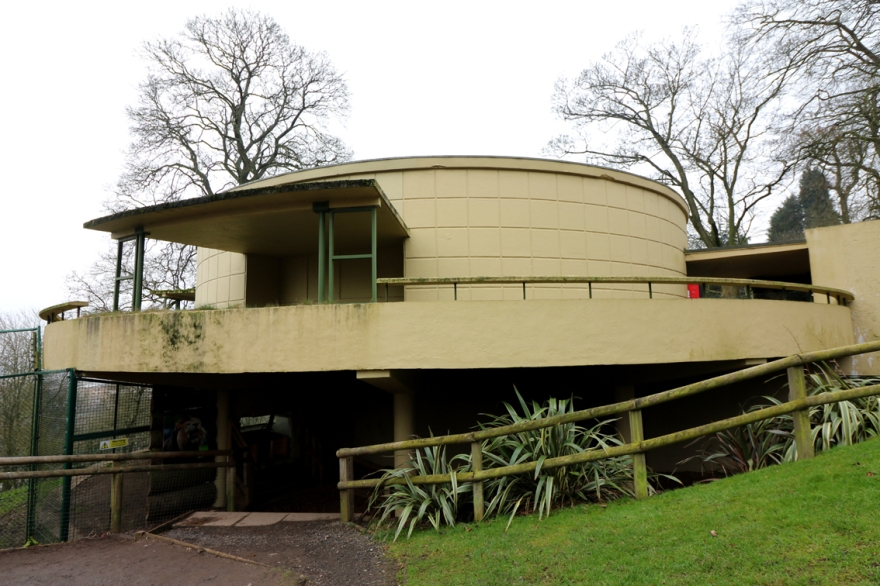 tropical bird house3