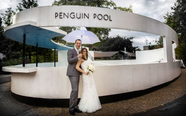 wedding_couple_penguin_pool_london_zoo