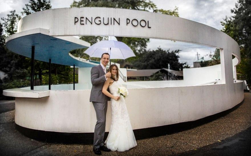 wedding_couple_penguin_pool_london_zoo